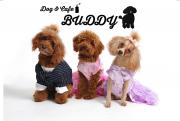Dog & Cafe BUDDY